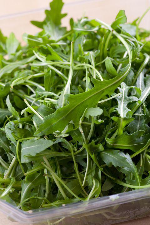 Arugula types of lettuce