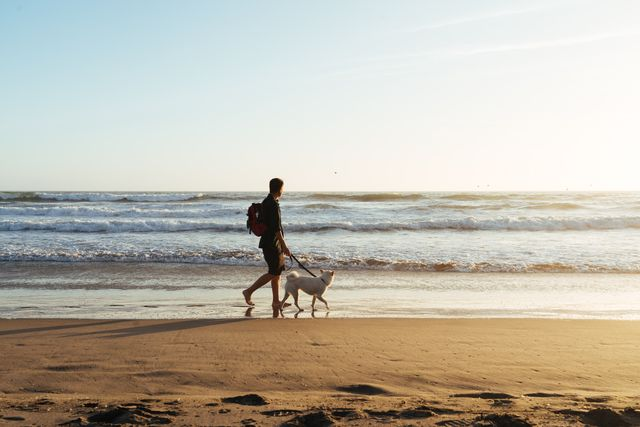 asian man with dog walking on beach against clear sky, foster city, united states