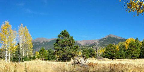 Arizona Trail at Aspen Corner
