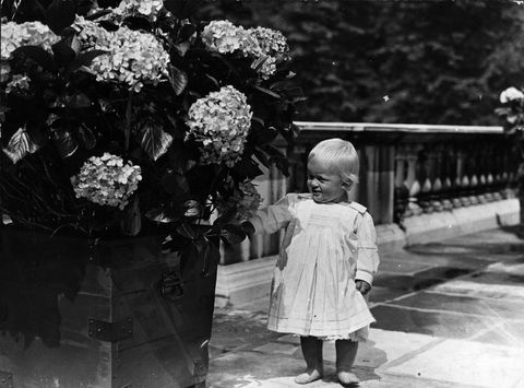 菲利普親王 去世 99歲 回顧照片 希臘王子 童年