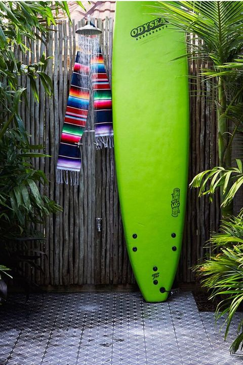 Green, Plant, Tree, Banana, Longboard, Surfboard, Sports equipment,