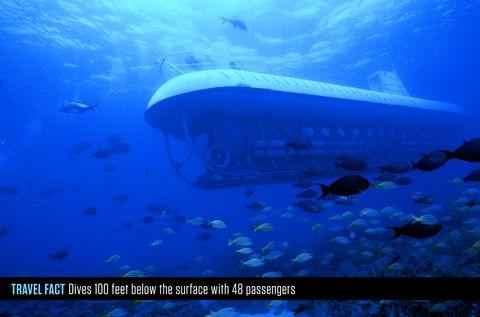 Underwater, Marine biology, Ocean, Sea, Shipwreck, Submarine, Vehicle,