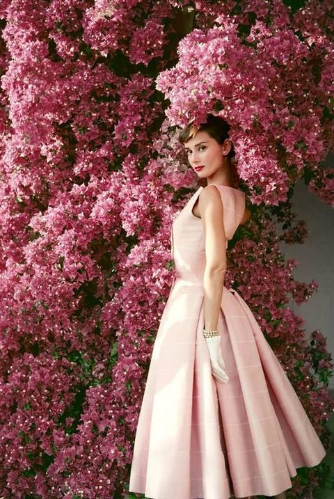 Pink, Lilac, Dress, Flower, Spring, Plant, Purple, Petal, Fashion, Gown,