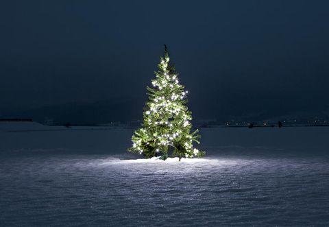 Auguri Piu Belli Di Natale.Gli Auguri Di Natale Piu Belli Di Instagram