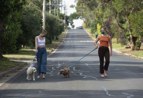 australian adults covid 19 social distancing