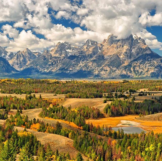 autumn color in grand teton national park 6