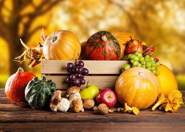 autumn harvest of pumpkins, grapes, apples and mushrooms, ottawa, canada