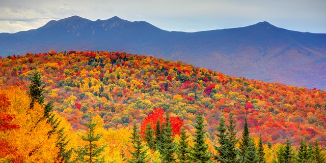 The Weather Channel Says Peak Fall Foliage May Be Delayed This Year