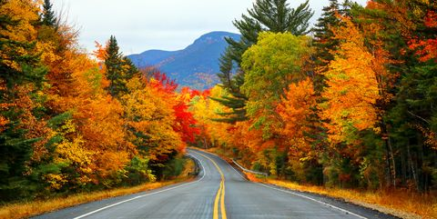 autumn in the white mountains of new hampshire