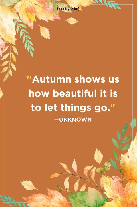 Image result for quotes starting over in the fall