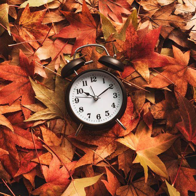 autumn season time, alarm clock in dry fall leaves