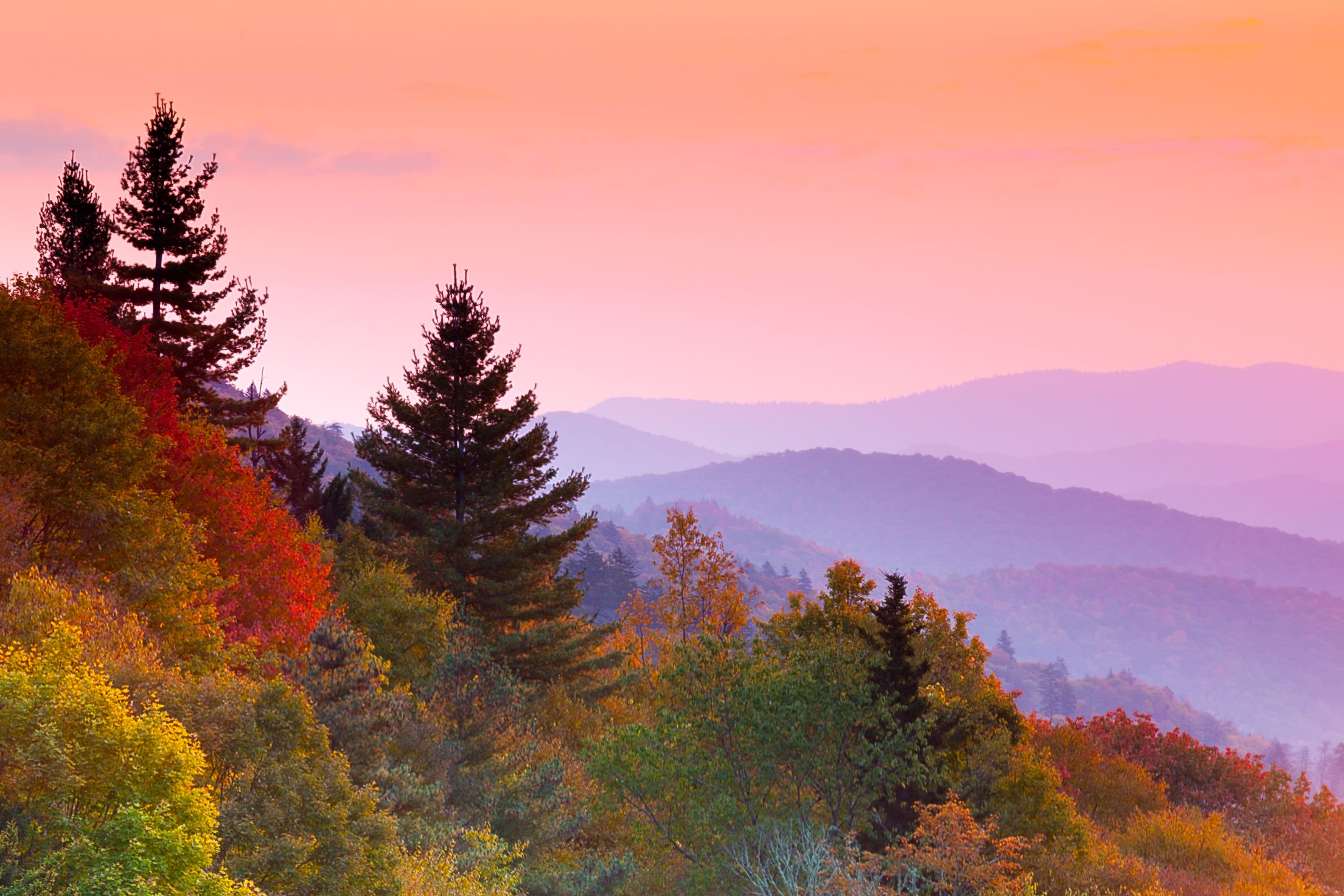 Where and When to See the Best Fall Foliage Colors in Every State
