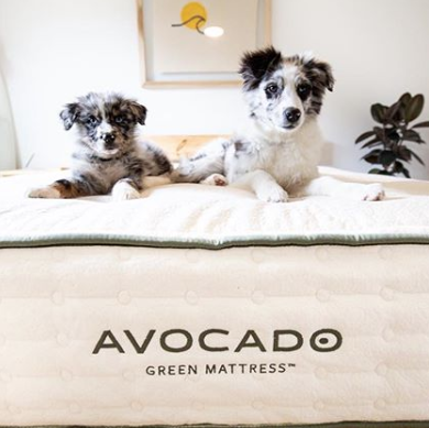 How to Pick an Eco-Friendly Mattress