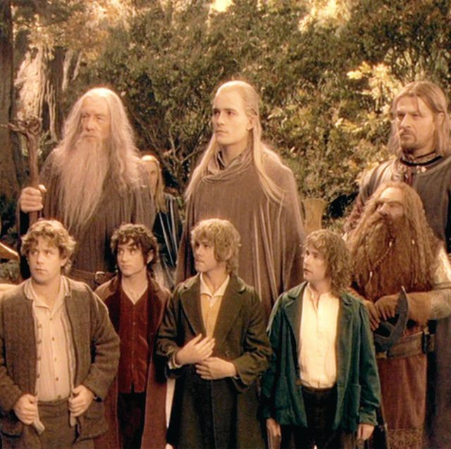 for review and preview purposes only from left, viggo mortensen, ian mckellen, orlando bloom, sean bean, john rhys davies and front row sean astin, elijah wood, dominic monaghan and billy boyd in a scene from the movie the lord of the rings the fellowship of the ring