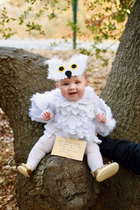 baby halloween costume hedwig owl