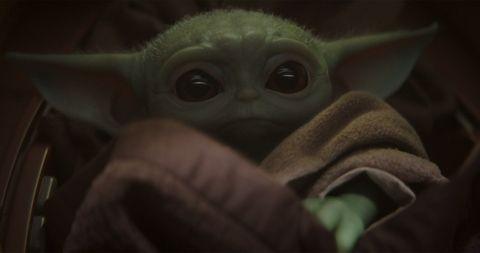 Yoda, Snout, Eye, Mouth, Organism, Fictional character,