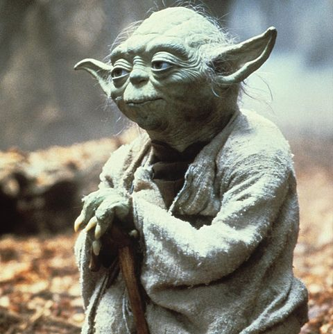 Image result for when did yoda baby show up?