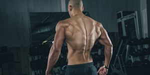 Back muscles of a young man at gym