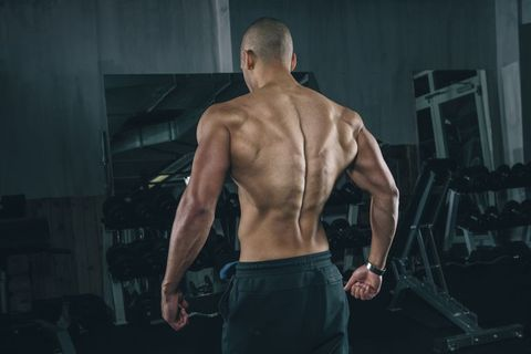 Best Back Workouts: 10 Routines to Build a Muscular Back