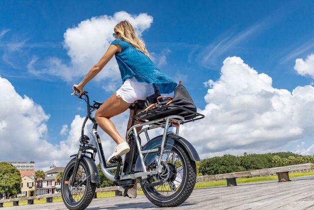 rad power bike