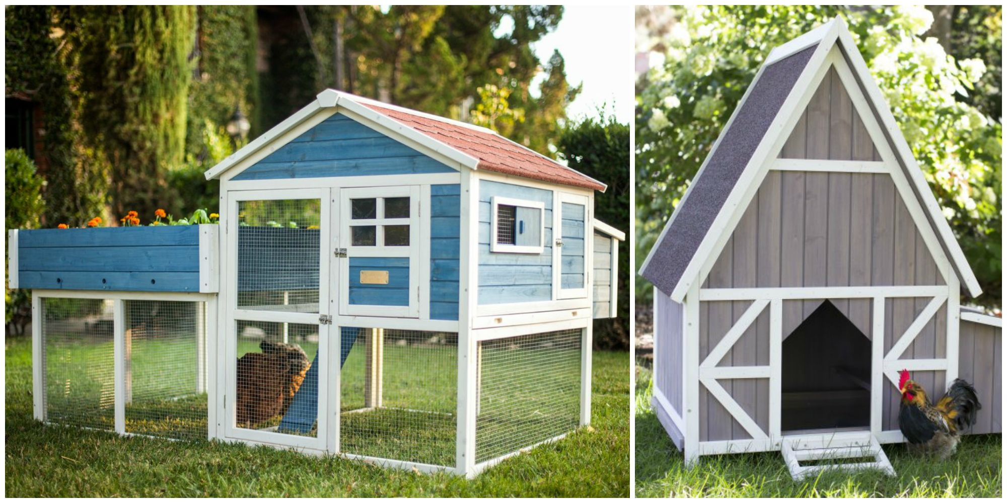15 best chicken coop kits for sale cool backyard chicken coops to buy rh countryliving com backyard chicken house designs backyard chicken house philippines