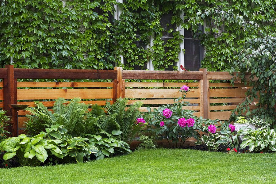 20 Best Backyard Fence Ideas Privacy For Backyards