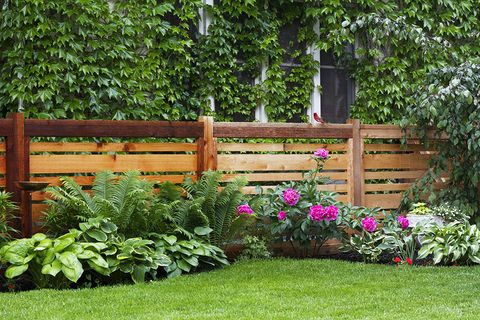 20 Best Backyard Fence Ideas - Privacy Fence Ideas for ...
