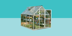 tiny backyard greenhouse amazon