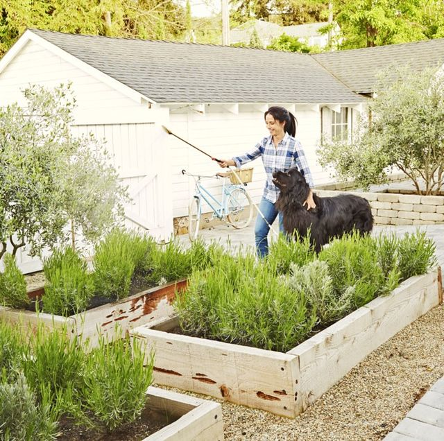 85 Best Backyard Ideas - Easy DIY Backyard Design Tips