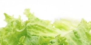 bagged-salad-300x239.jpg