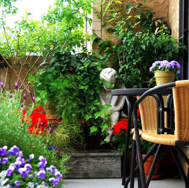 balcony garden chelsea flower show 2021
