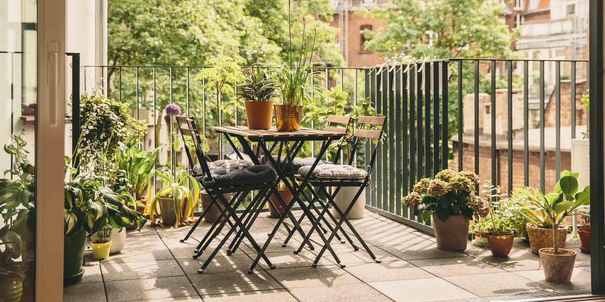 Bedenk Voor Je Balkonplanten Inkoopt Waar Staat De Zon