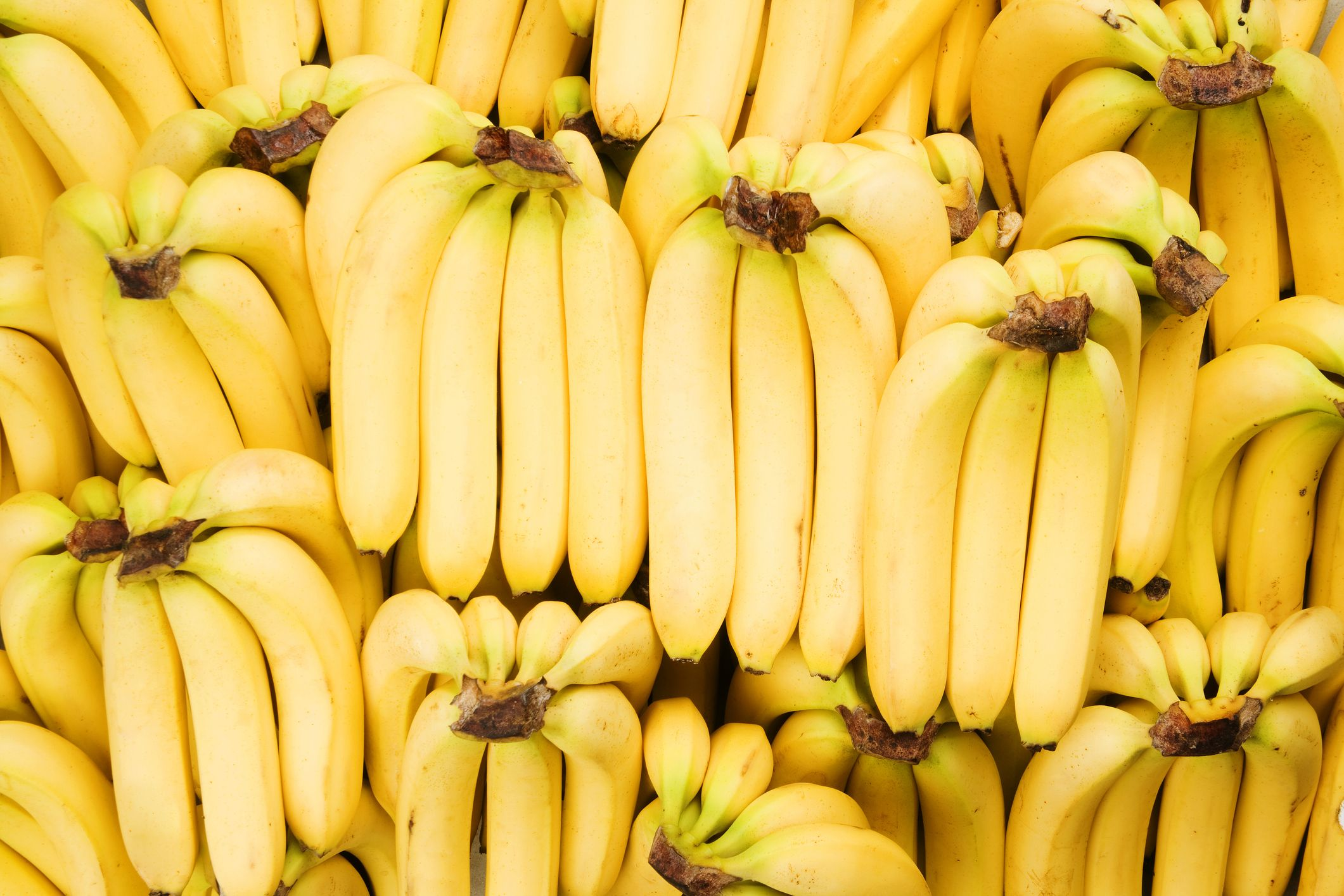 This Banana-Killing Fungus Could Cause The Fruit To Go Extinct