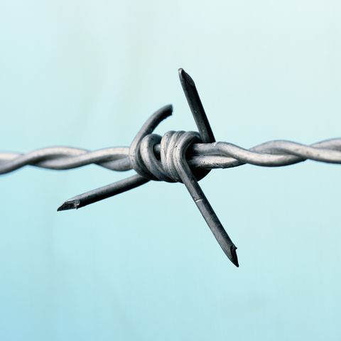 Barbed wire, close-up