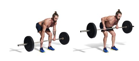 weights, arm, barbell, leg, weightlifter, physical fitness, exercise equipment, human leg, chest, weight training,