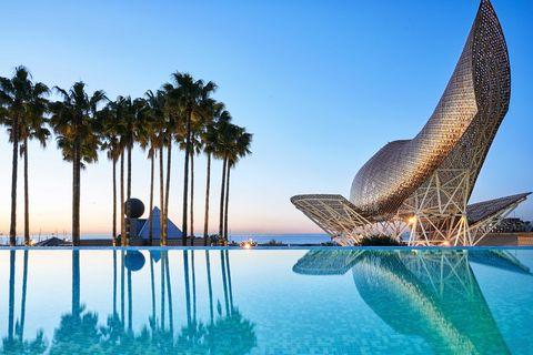 Blue, Water, Sky, Azure, Palm tree, Leisure, Vacation, Swimming pool, Tree, Tropics,