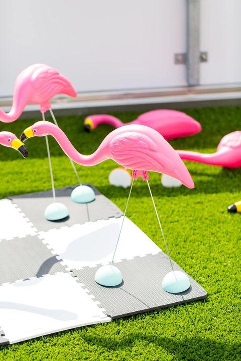 Flamingo, Pink, Product, Water bird, Grass, Bird, Design, Table, Plant, Flower,
