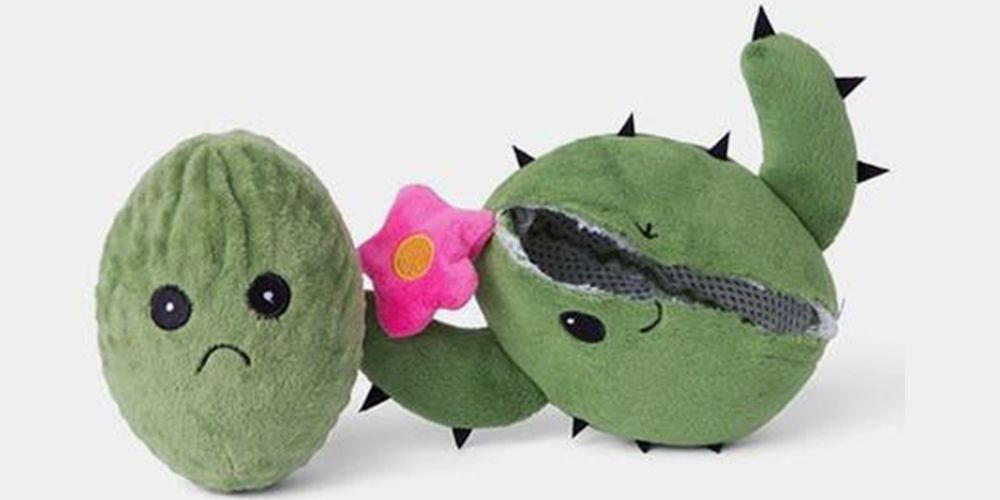 Does Your Dog Destroy Plush Toys? These Come With an Extra One Inside