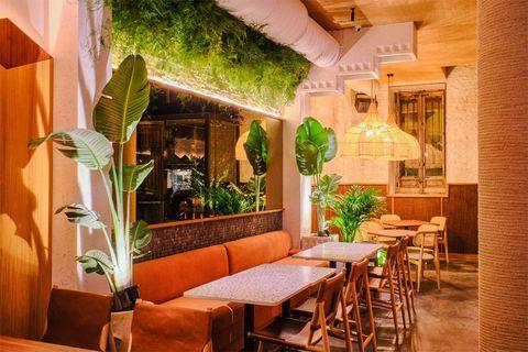 restaurante barracuda, madrid