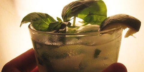 Basil-drink-in-hand.jpg