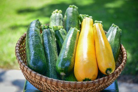 櫛瓜營養熱量好處