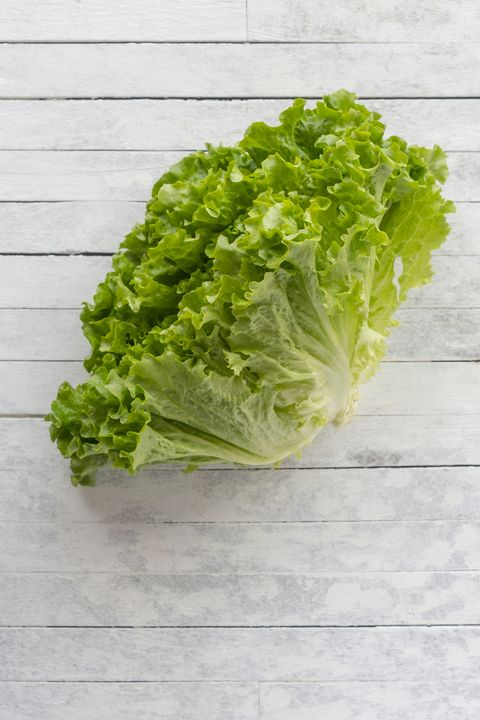 15 Different Types Of Lettuce Types Of Lettuce For Salad Recipes