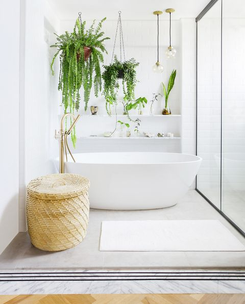bathroom renovation, white bathroom with plants, victoria  albert baths