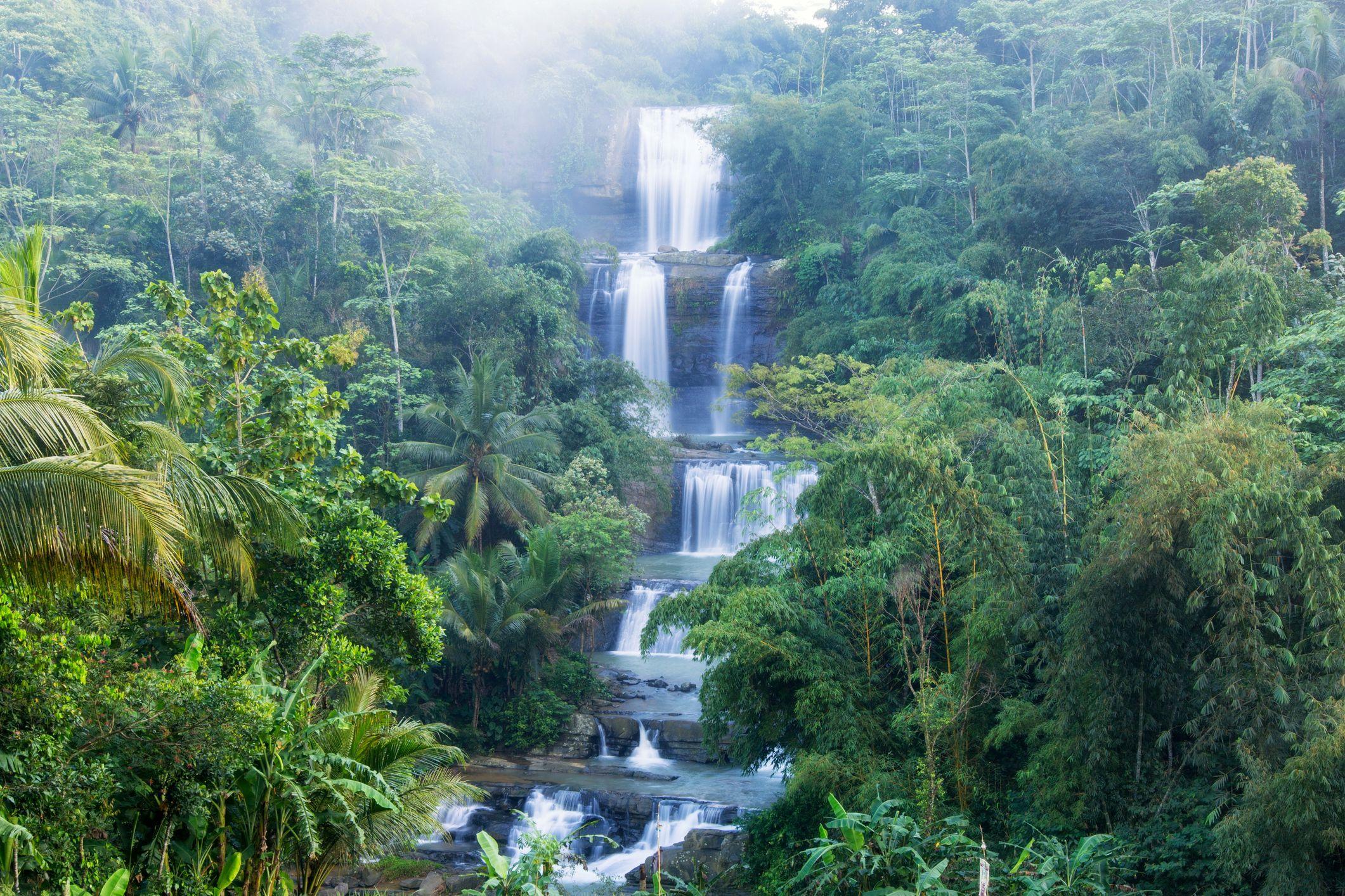 Image result for nangga waterval indonesie - fotoprint op tuinposter 60x40
