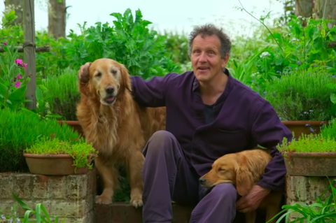 bbc gardeners' world   monty don with his dogs nigel and nellie