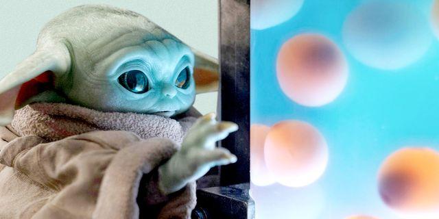 baby yoda looking at fish eggs