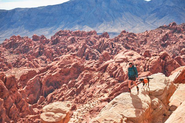 backcountry man walking through rocky terrain with dog