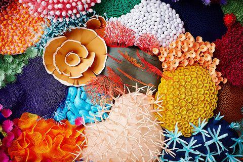 多彩的珊瑚礁紙雕