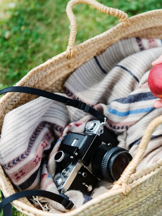 beach bag with camera, blanket and nectarine