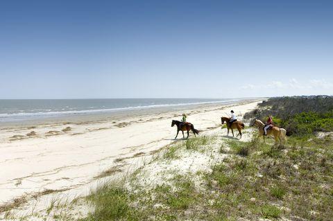 Sea Island Beach Rides